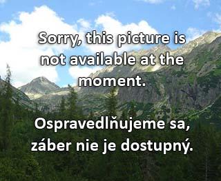 webkamera - Malá Fatra - Vrátna (Chleb II., 1450 m)