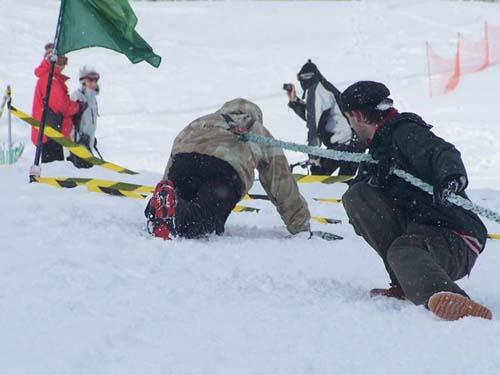 Bažanti na snehu